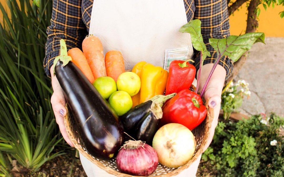 Cozinha Saudável e Responsável (CSR)