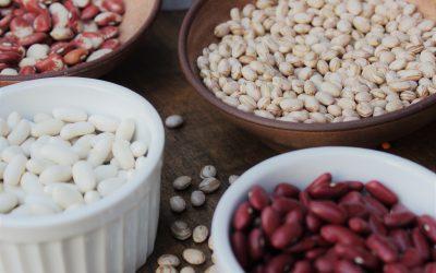 Ferro na Dieta Vegetariana